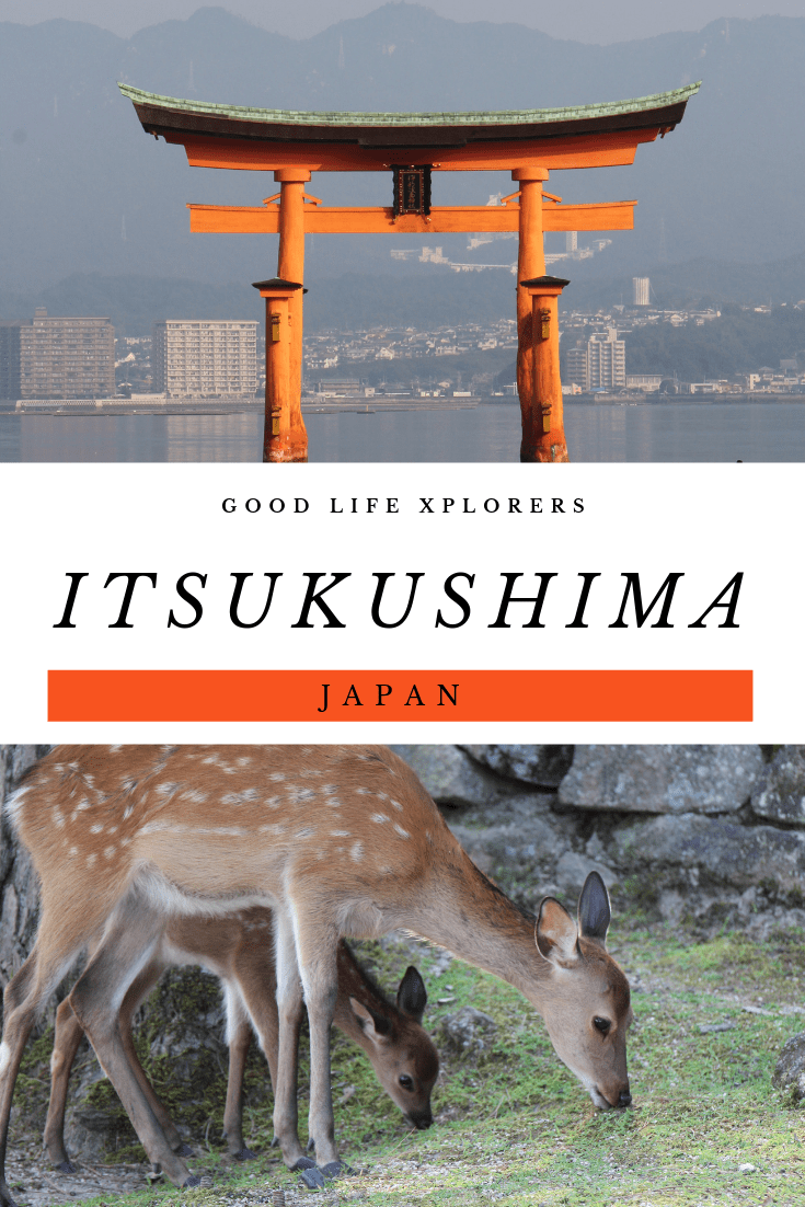 a collage of places in Miyajima Japan. The Itsukushima Torii gate and a picture of free roaming deer eating grass.