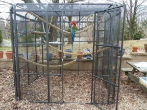 Parrot cage with rope perches