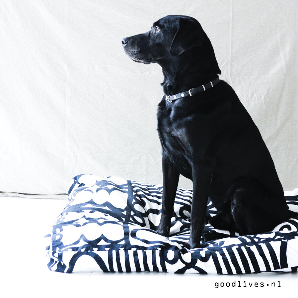 DIY Dog cushion with our dog Bruno on Goodlives.nl