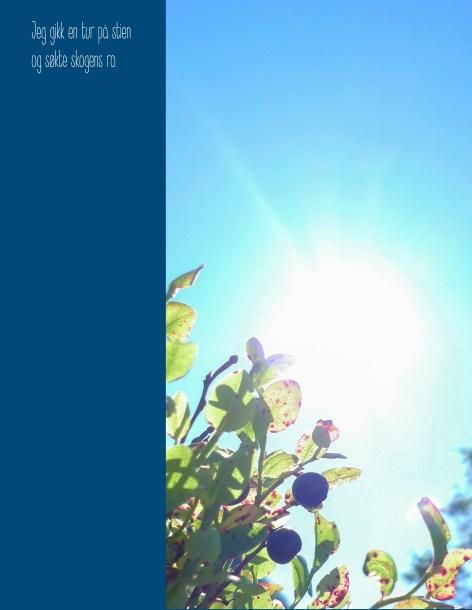 blåbær m tekst