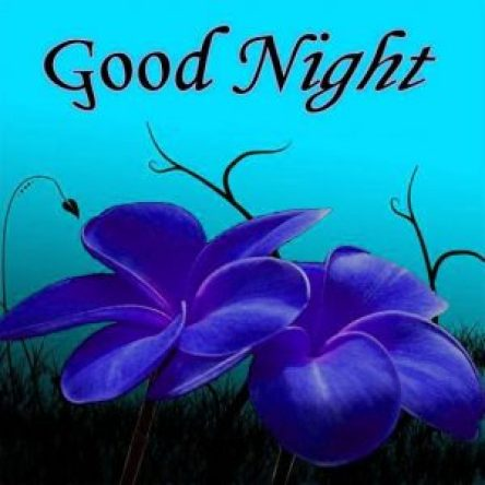 good night love images - scoailly keeda