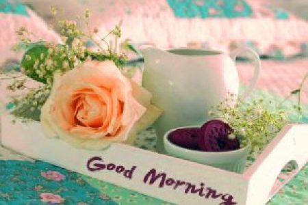 192  Good Morning 3D Photos Images Download Good Morning 3D Images Photos Wallpaper Pictures HD With Flower Download  for Whatsaap