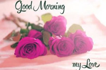 192  Good Morning 3D Photos Images Download Good Morning 3D Photos With Flower