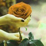 Nice Whatsapp Dp Images 1