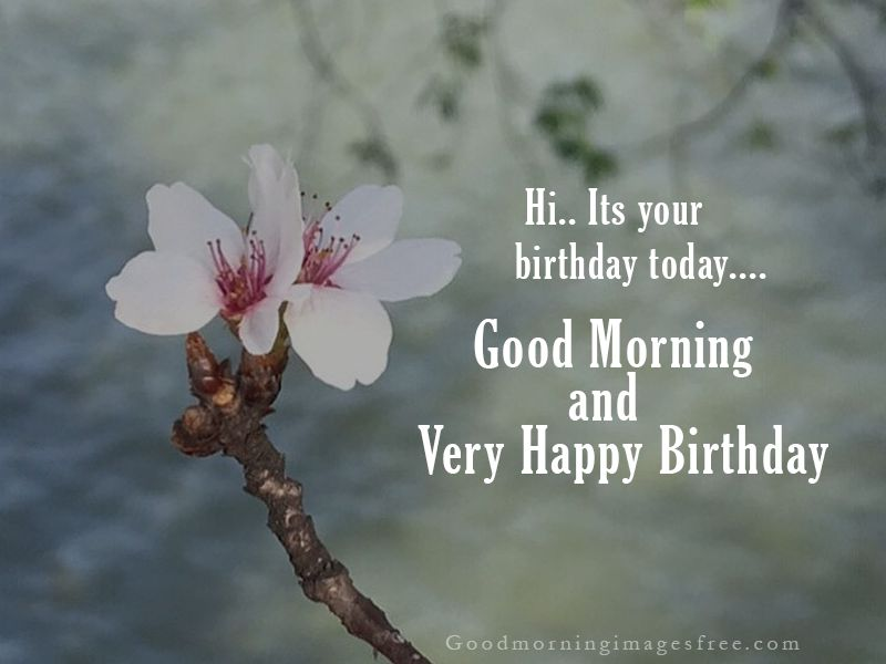 51 Good Morning Happy Birthday Wishes Images Quotes And Status