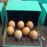 Patrick Roger Paris-easter eggs