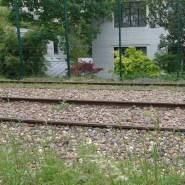 La Petite Ceinture Paris - The unused railway