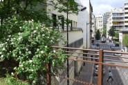 View from the Petite Ceinture - Paris