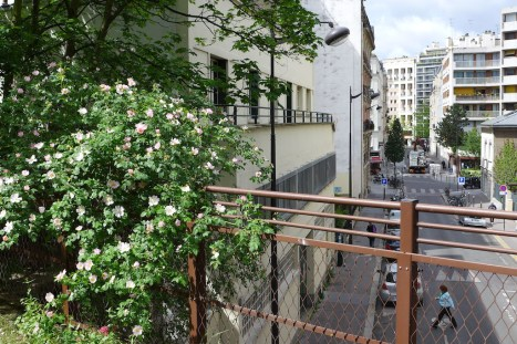 View from the Petite Ceinture - Paris