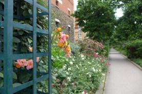 Rosebushes on the Viaduc des Arts