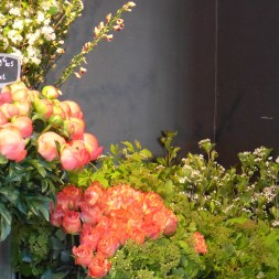 Adriane M. Paris - inside the shop