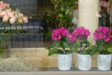 Flowers Paris Rue de Babylione