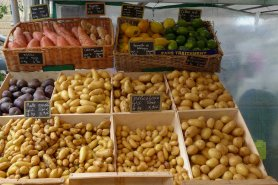 Marche-Saxe-Breteuil-Paris-Various Potatoes