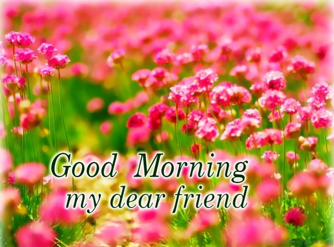 11 Good Morning Wishes For My Dear Friend
