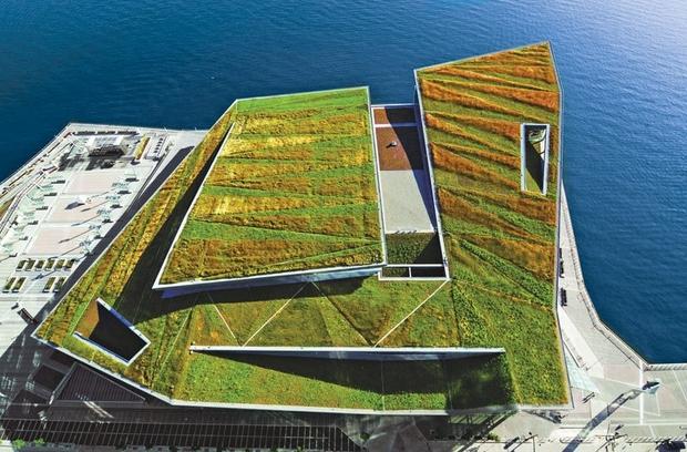 Urban Garden Design
