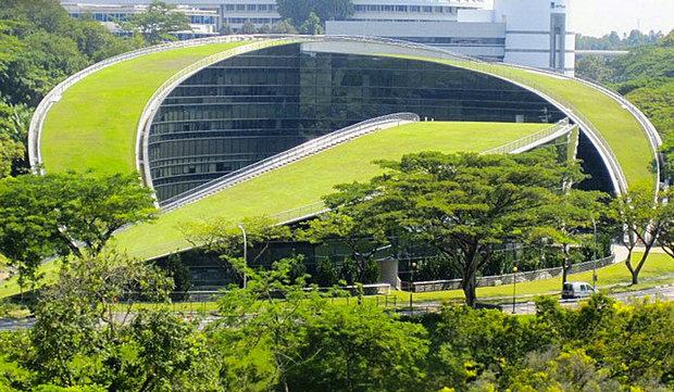 School Landscape Design