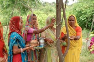 111 trees planted-India-women