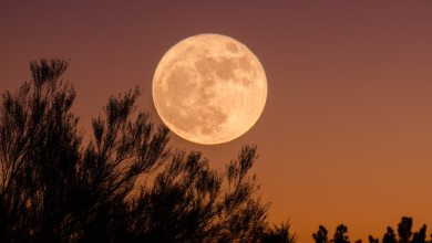 Spectacular Super Pink Moon Set to Rise Next Week—Here's How to Photograph It in the Night Sky