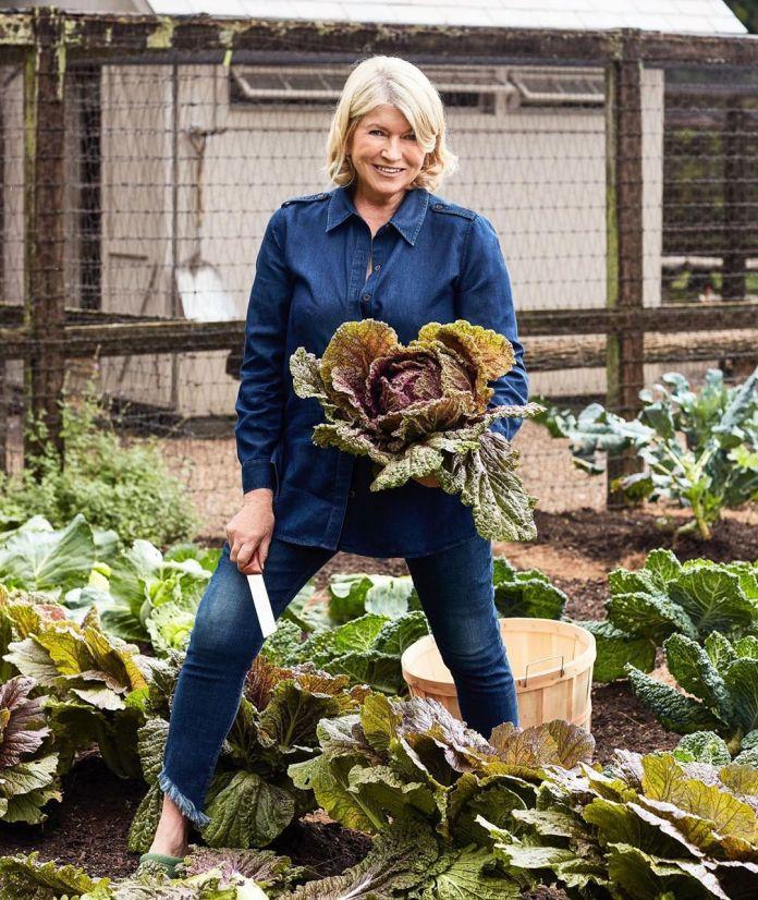 Martha Stewart pinoy adobo