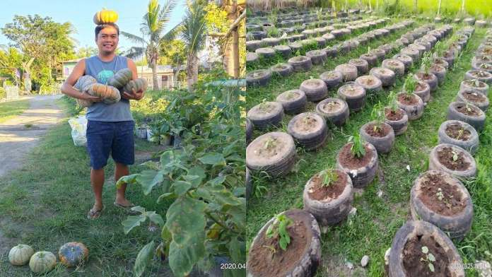 Camarines Sur church vegetable garden