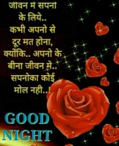 Hindi Romantic Good Night