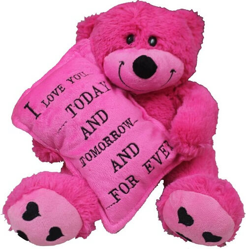 pink teddy bear love quote