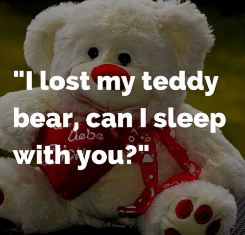 teddy bear funny quote