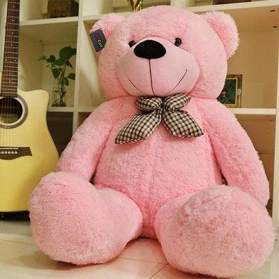 teddy bear images profile
