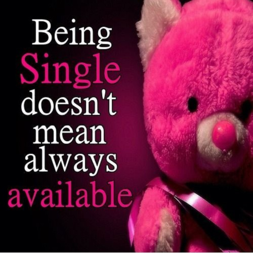 teddy bear profile pic quote
