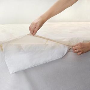 Organic Cotton Mattress Allergy Encats Bedcare Zipper Comforter