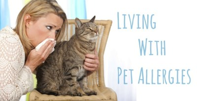 GoodPetParent Pet Allergies