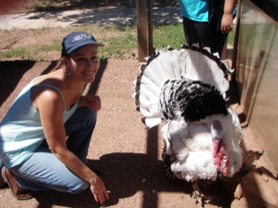 My special friend Pumpkin the turkey, one of the animal ambassadors at Whispering Hope Ranch.