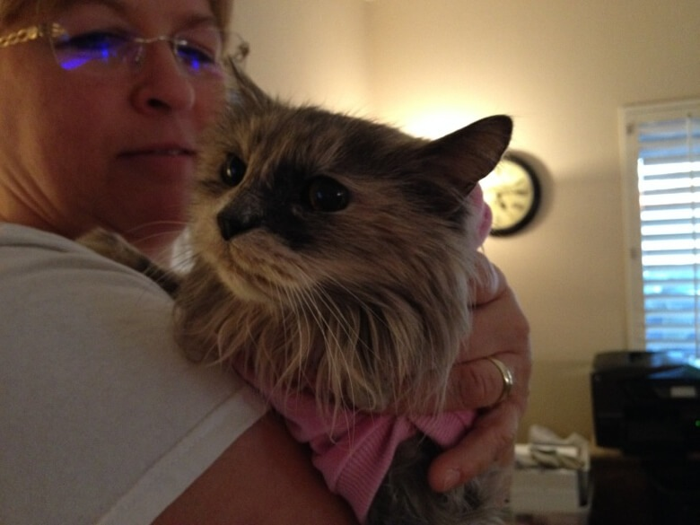 Sandra with her own cat Sushi, whom she rescued when Sushi was surrendered to a kill shelter at the age of 20.