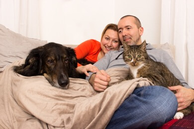 People cuddling with dog and cat