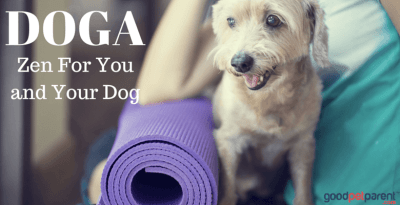 Doga: Zen For You And Your Dog