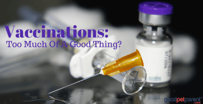 Vaccinations: Too Much Of A Good Thing?