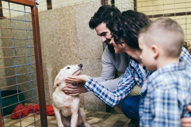Family with shelter dog