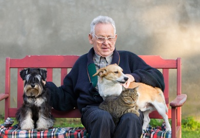 Pets with elderly man