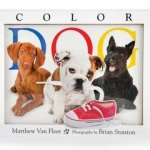 color-dog-cvr.jpg