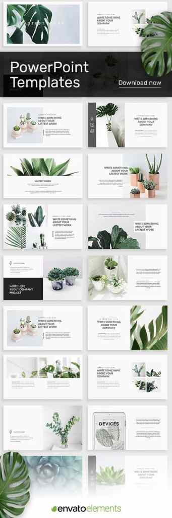 Envato Succulent PowerPoint Template for Visual Aid Slide Deck