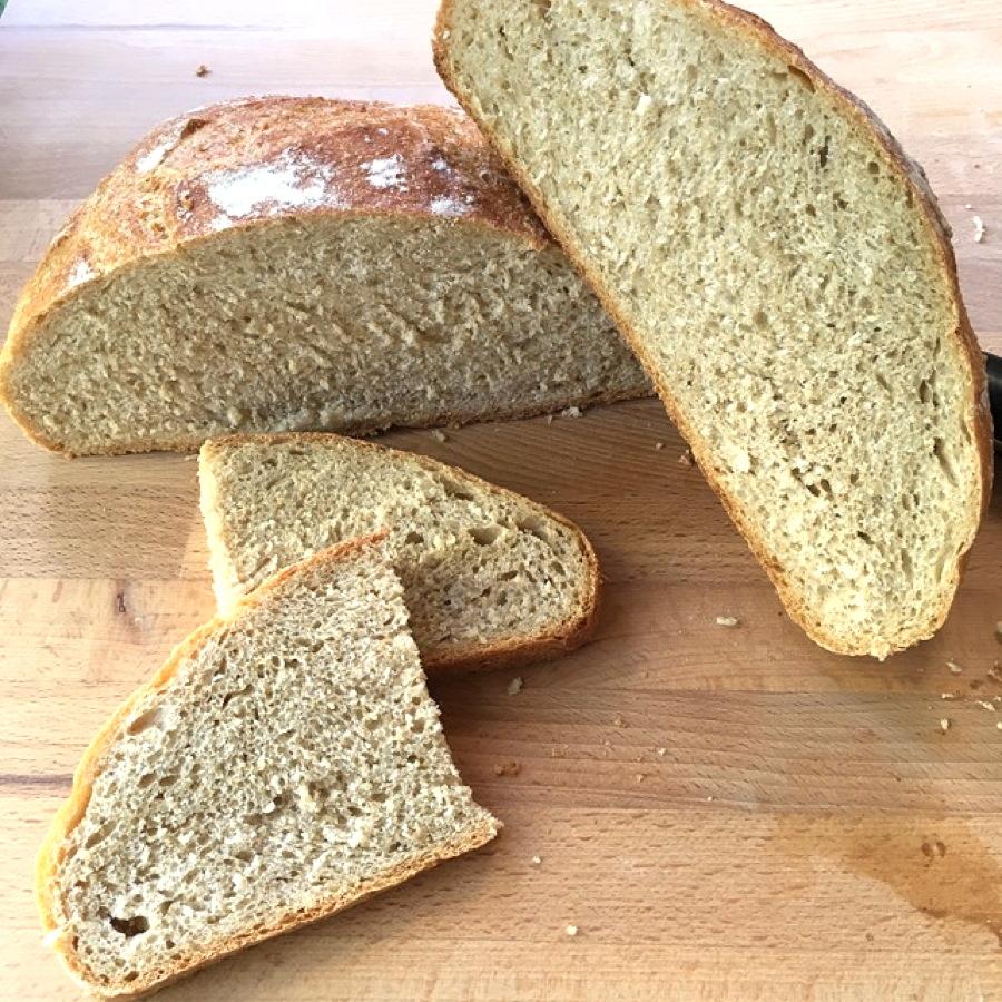 no-knead wheat bread