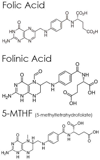 Folate, Folic Acid, Folinic Acid, 5-MTHF
