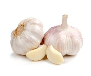 prebiotic diet, garlic nutrition