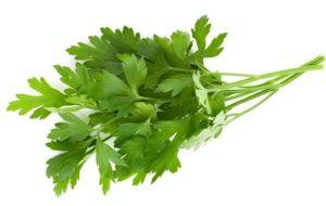 Health Benefits of Parsley - Italian parsley