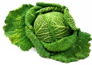 Curly Cabbage Nutrition of Cabbage