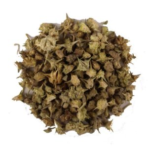 Tribulus Terrestris Uses - nettles