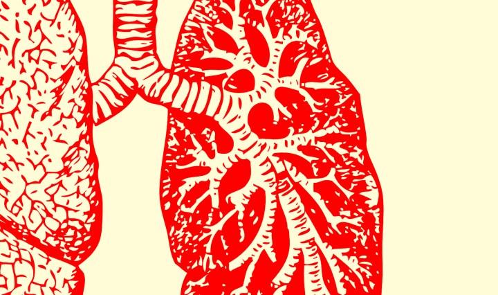 respiratory therapist job description