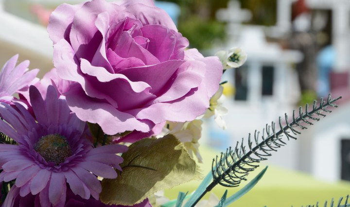 Connecticut mortician requirements