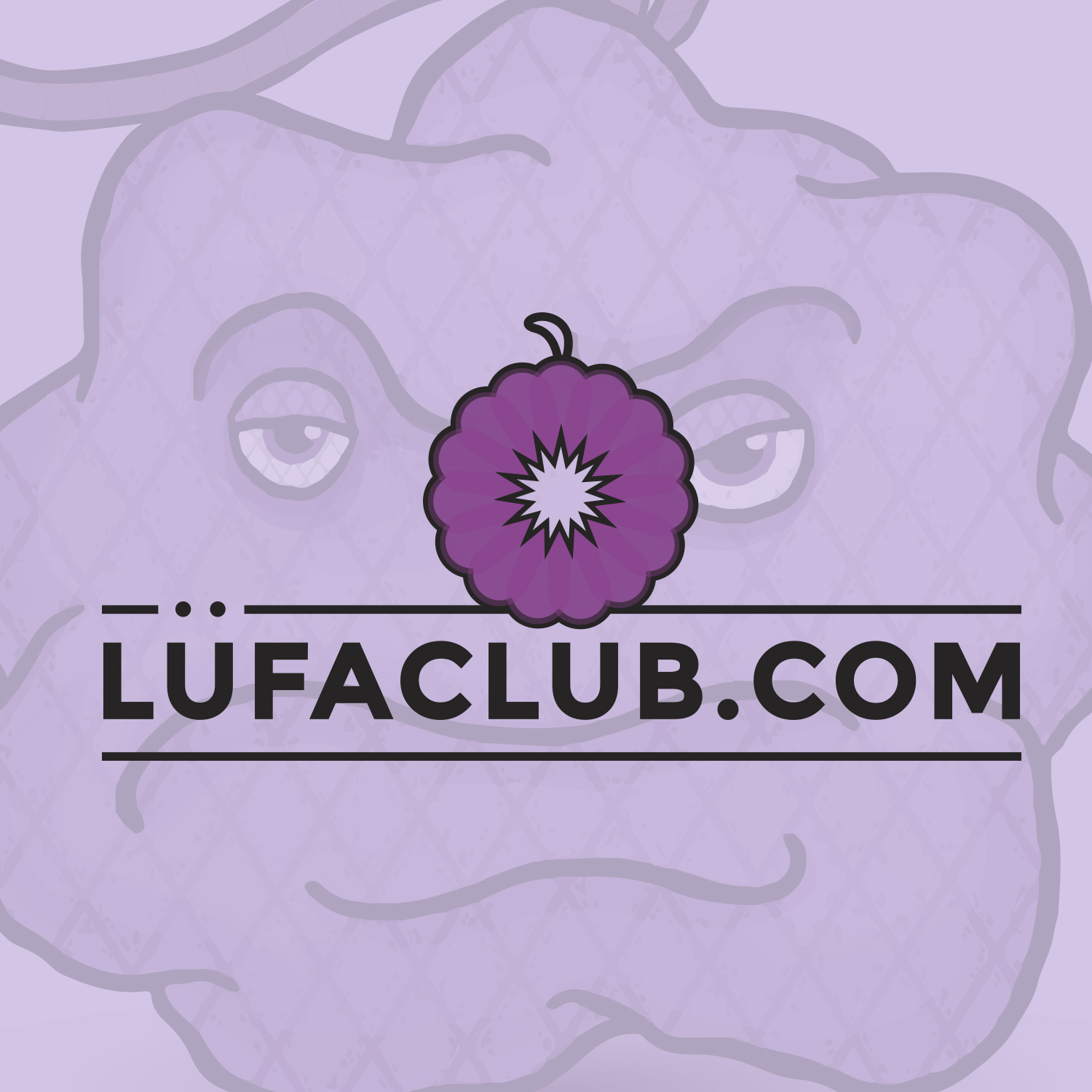 Lufa Club Monthly Loofah Subscription