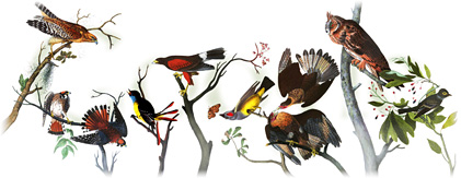 226th Birthday of John James Audubon